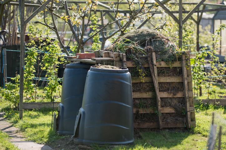 Composting Advice