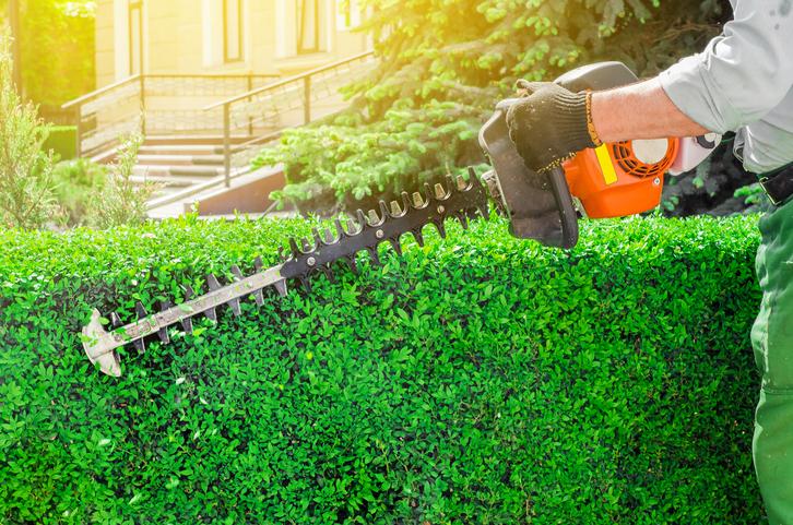 7 Garden Power Tools