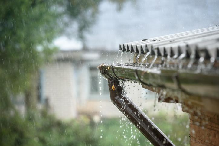 Rainwater Harvesting Advice
